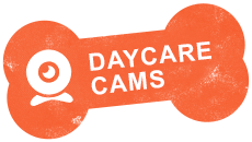 https://happypawsorlando.com/wp-content/uploads/2020/10/daycarecams.png
